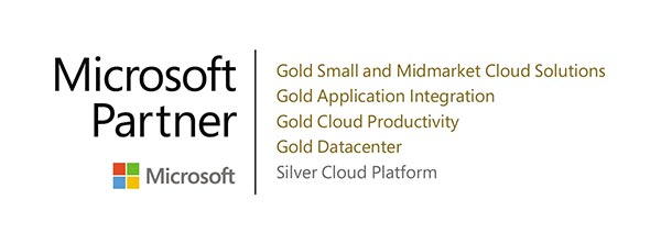 Microsoft Partner accreditations badge