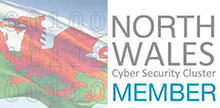 Pro-Networks is a member of the North Wales Cyber Security Cluster